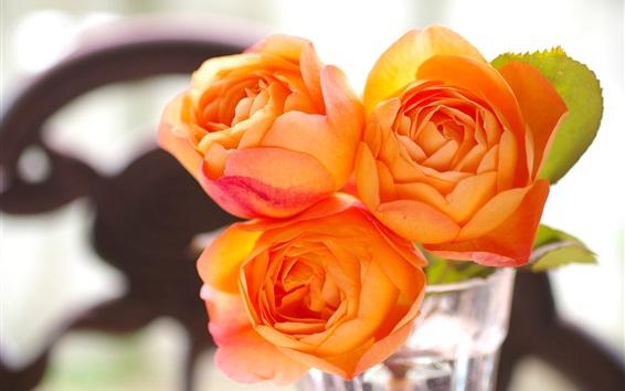 Fond d'écran Orange, rose, fleurs, verre, tasse