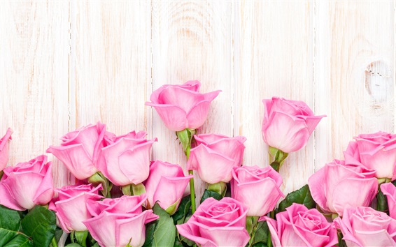 Wallpaper Pink rose flowers, wood background