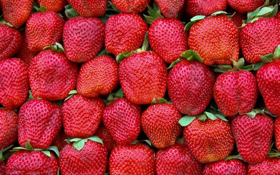 Papéis de Parede Morangos vermelhos, frutas frescas