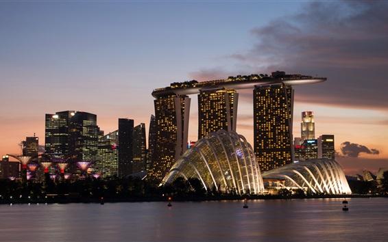 Papéis de Parede Cingapura, cidade, noite, arranha-céus, edifícios, passeio, luzes