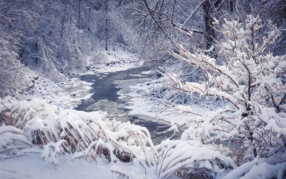 Fond d'écran Neige, hiver, arbres, forêt, rivière, flocons de neige