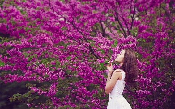 Wallpaper Spring flowering tree, white dress girl