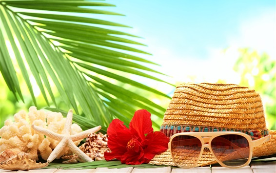 Wallpaper Still life, tropical, hat, seashell, starfish, flower, sunglasses