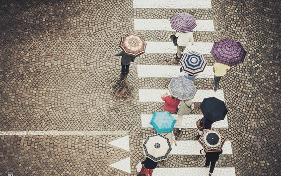 Wallpaper Street, crosswalk, people walking, umbrellas, rainy day