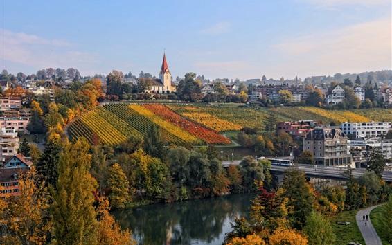 壁紙 スイス、チューリッヒ、ブドウ園、川、住宅、道路、秋
