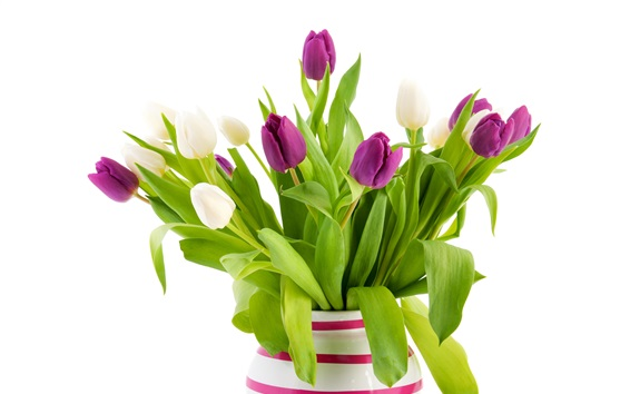Wallpaper White and purple tulip flowers, vase