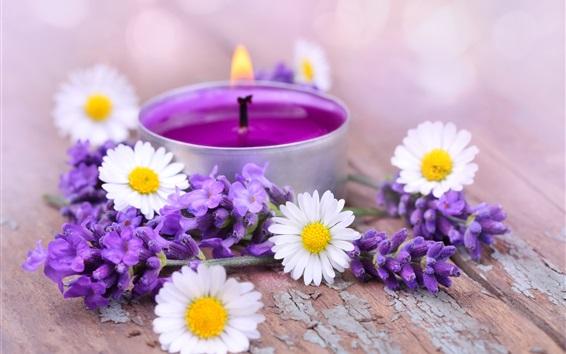 배경 화면 화이트 카모마일 꽃, 보라색 라벤더, 촛불, 불