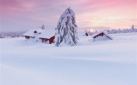 Обои Зимнее утро, толстый снег, дом, деревья, восход
