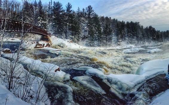 Обои Зима, снег, река, деревья, мост