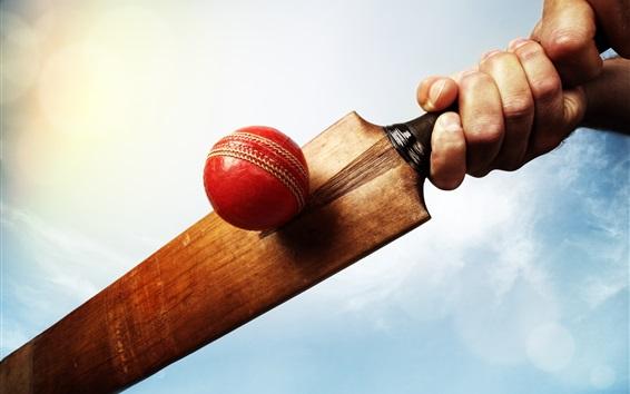 Wallpaper Ball, cricket, hand