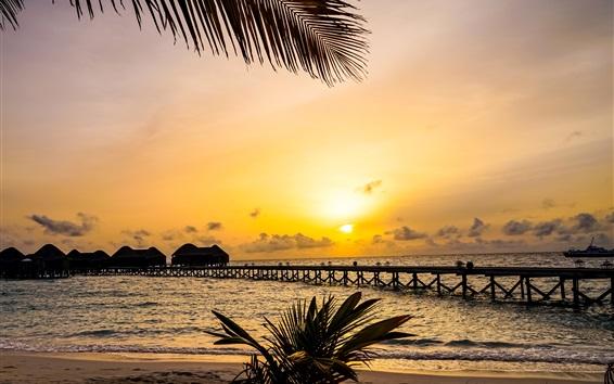 Papéis de Parede Natureza tropical bonita, palmeiras, ponte, recurso, cabanas, mar, pôr do sol, Maldivas