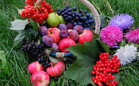 壁纸 水果,草,葡萄,苹果,李子,浆果,花