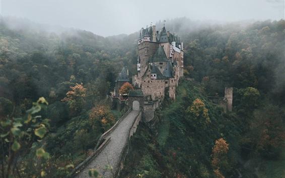 Wallpaper Germany, castle, autumn morning, fog, forest, trees