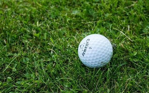 Fond d'écran Balle de golf dans la pelouse