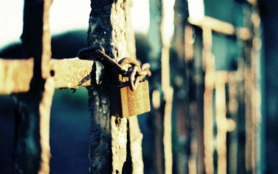 Обои Железный забор, замок, цепь