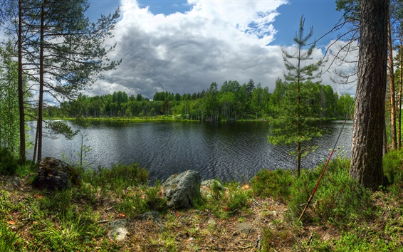 Wallpaper Karelia, Lake Ladoga, Kilpola island, trees, clouds, Russia