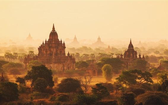 Wallpaper Myanmar, haze, temples, morning, trees, fog