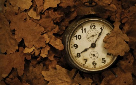 Wallpaper Old clock, leaves