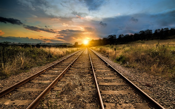 壁紙 鉄道、夕焼け、草