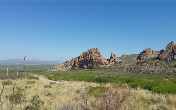 壁紙 岩山、草、道路、自然の風景、ニューメキシコ、アメリカ
