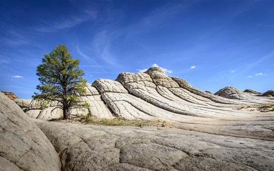 Wallpaper Rocks, mountains, tree, blue sky, nature