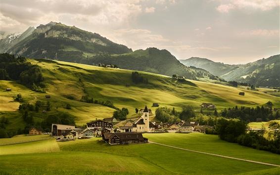 Обои Швейцария, луга, зеленые поля, деревня, Альпы, горы, деревья