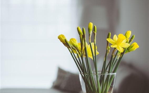 Fond d'écran Jaune, narcissus, fleurs, vase