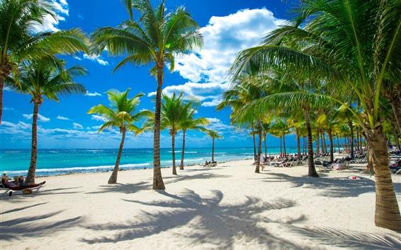 Обои Пляж, море, пальмы, тропики, облака, солнце