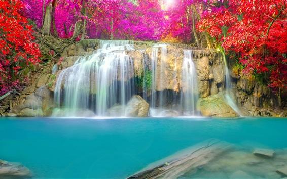 Fond d'écran Belle cascade, arbres, feuilles rouges, l'eau, l'automne