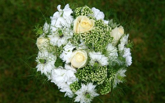 Papéis de Parede Buquê, flores, rosa branca