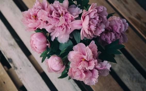 Fond d'écran Bouquet de pivoines, fleurs roses, banc
