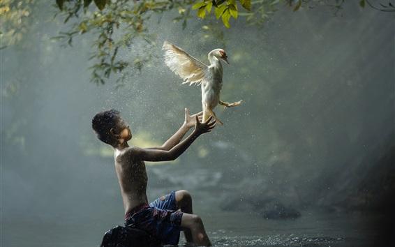 Fond d'écran Garçon et oiseau, rivière