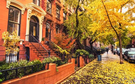 Обои Бруклин, город, дома, тротуар, осень, деревья, листья, дождь, США