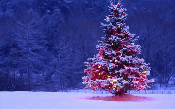 Wallpaper Christmas tree, snow, lights, dusk