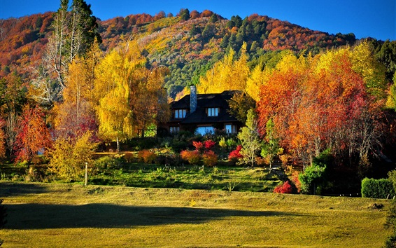 Wallpaper Colorful autumn, trees, yellow and red leaves, house