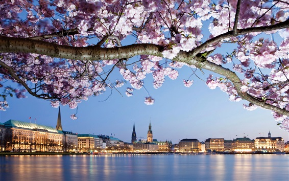 Germany, Hamburg, flowers, river, city, houses, lights Wallpaper Preview