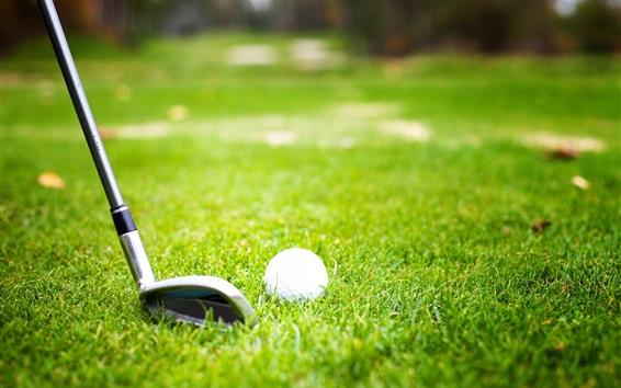 Wallpaper Golf, ball, grass