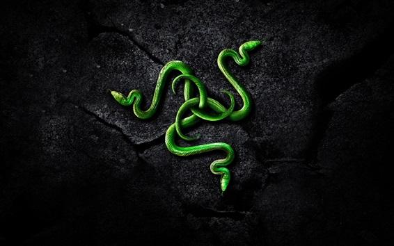 Обои Зеленая змея, скалы