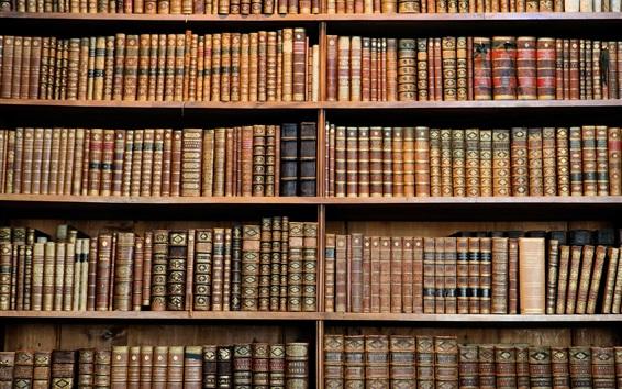 Wallpaper Library, bookshelf, books