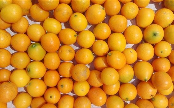 Wallpaper Many kumquat