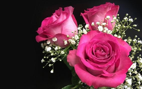 Обои Розовые розы, цветы, букет, черный фон