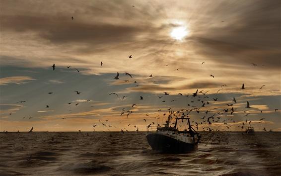 Fondos de pantalla Aves marinas, gaviotas, barco, mar, olas, puesta de sol