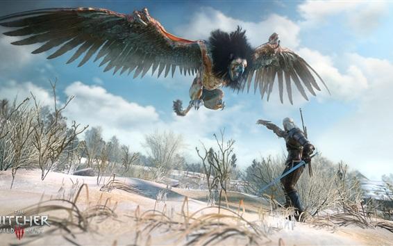 Fondos de pantalla El brujo 3: caza salvaje, pájaro del monstruo
