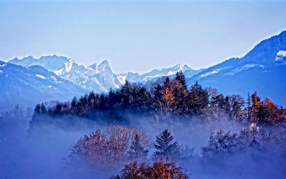Wallpaper Trees, mountains, autumn, fog, dawn