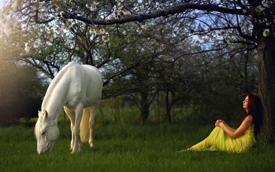 Обои Белый конь и девушка в саду