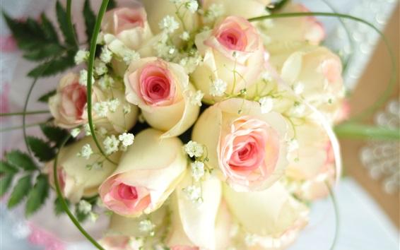 Papéis de Parede Rosas cor-de-rosa brancas das pétalas