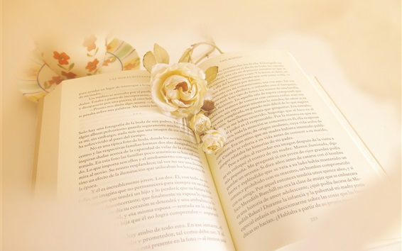 Wallpaper White rose flower and book