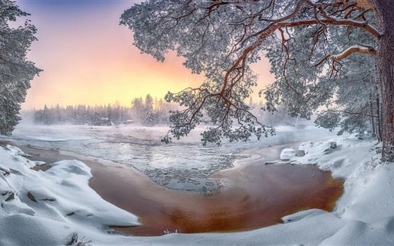 Papéis de Parede Inverno, paisagem, neve, árvores, branca, mundo