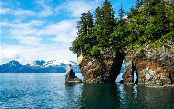 Wallpaper Alaska, Kenai Fjords National Park, mountains, trees, stones, water
