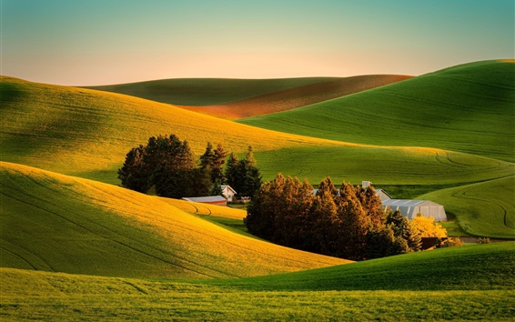 Wallpaper Beautiful farmland scenery, fields, trees, houses